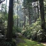 Wandelen door de mooie natuur