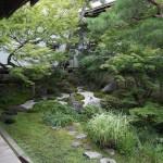Nog zo een moie japanse tuin